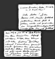"""Ich lebe!"", (I am alive!) Salo writes to his brother, Jakob after his release from the Bergen Belsen concentration camp."